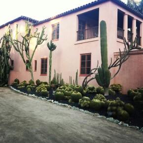 Lotus Land Home Base
