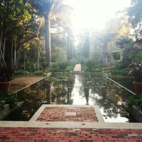Lotus Land Pool